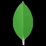 https://www.exaltech.it/wp-content/uploads/2020/01/mongo-2-160x160.png